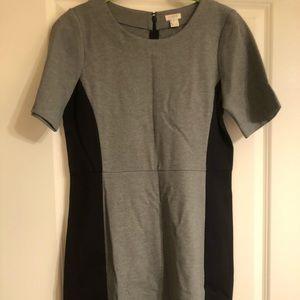 NWT J Crew grey/black color block work dress in 6